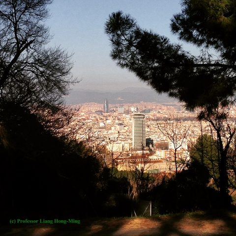 Barcelona outlook